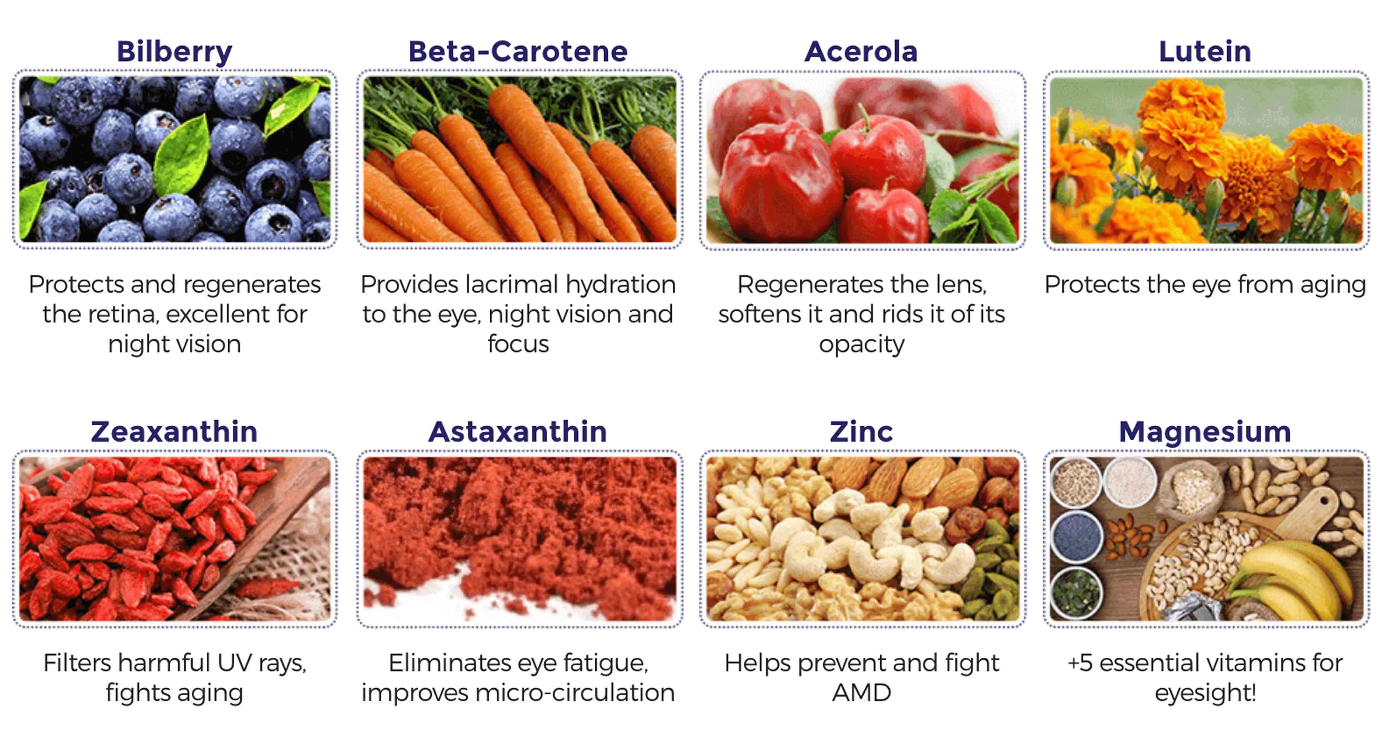 Vision rX20 Ingredients