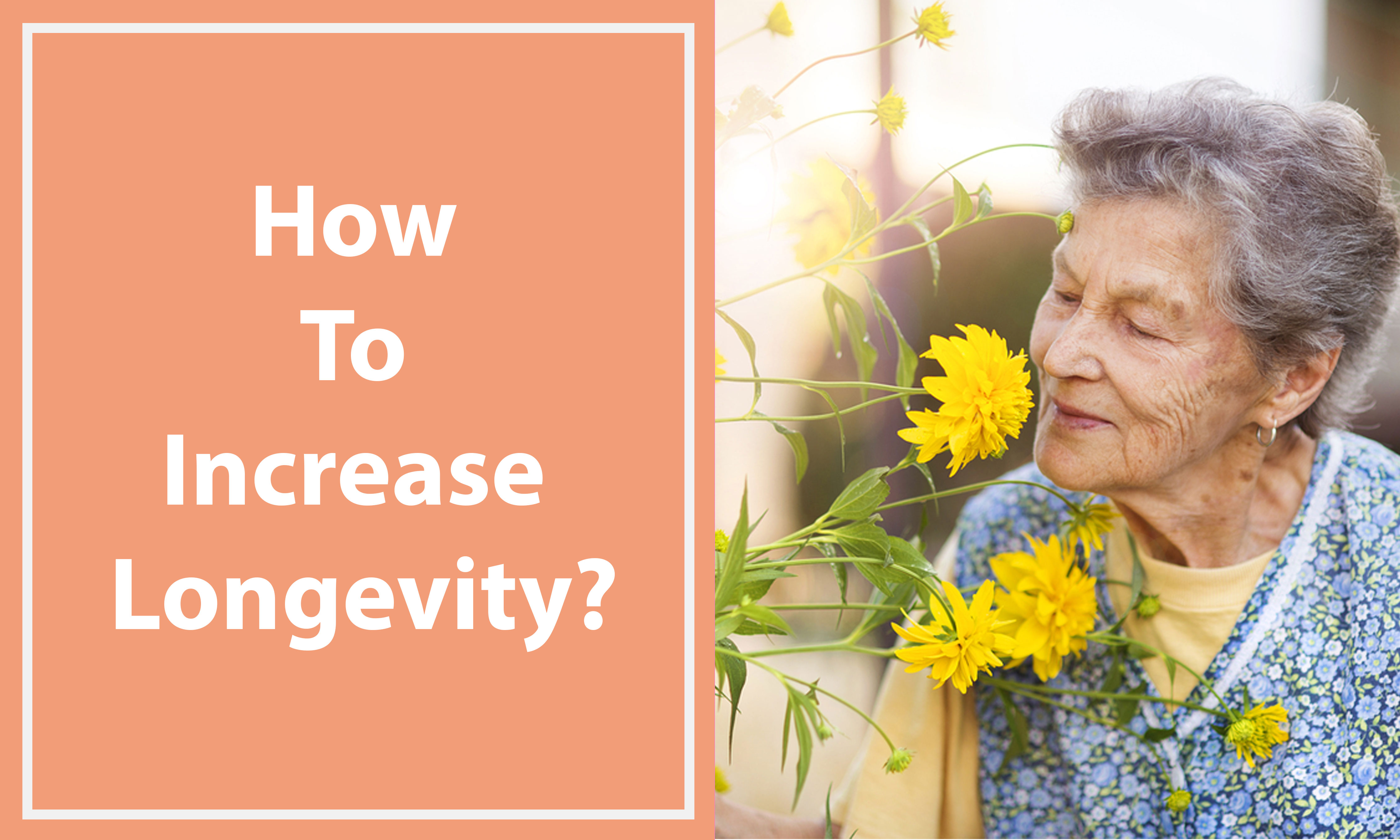 How-to-increase-longevity