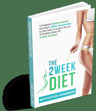 2 Week Diet Motivational Handbook
